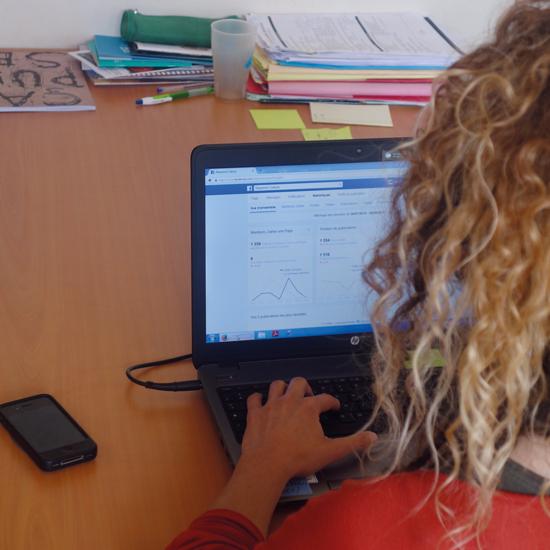 Facebook et Twitter, mode d'emploi